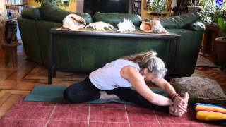 Janu-Sirsasana~Head to Knee Pose
