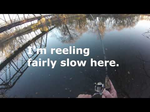 River Smallies Smallmouth Bass Fishing Video on  Species  by WillCFish Tips and Tricks.