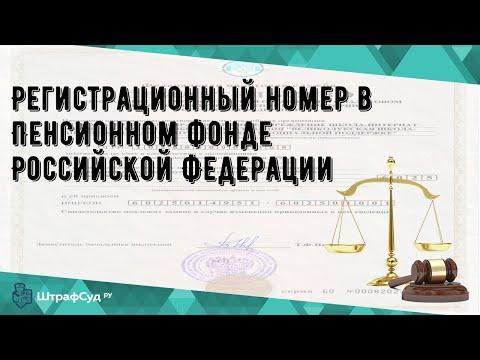 Регистрационный номер в Пенсионном фонде Российской Федерации