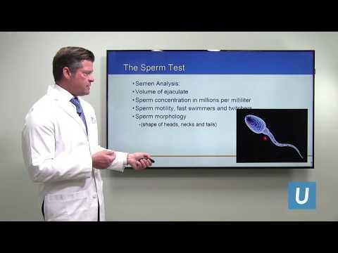 Prezzo ecografia della prostata