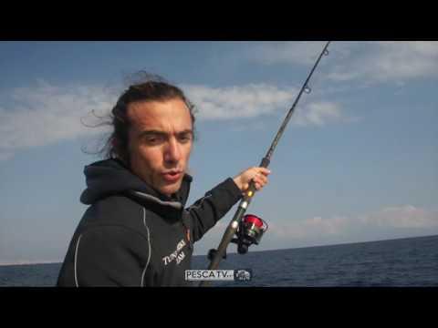 La pesca su un mormyshka su una pertica nellinverno