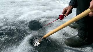 Отчеты о рыбалке на озере балтыми