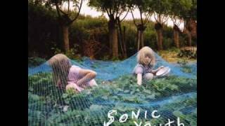 Disconnection Notice - Sonic Youth