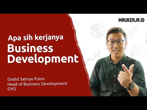 Apa aja sih kerjanya Business Development?