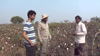 preview picture of video 'ORGANIC COTTON FARMING'