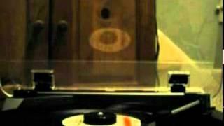 The Joe Perry Project:   Buzz Buzz (Vinyl)