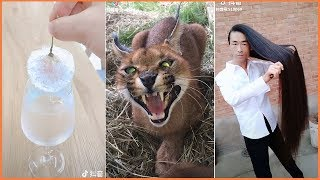New & Funny Videos in Tik Tok China Compilation #2