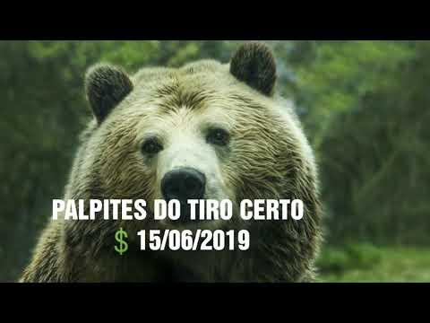 MP3 MUSICA BAIXAR PALPITE