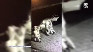 В Черкесске потасовка переросла в перестрелку