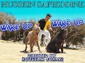 """Hussein Safieddine - """"Wake Up Wake Up"""" [Official Music Video]"""
