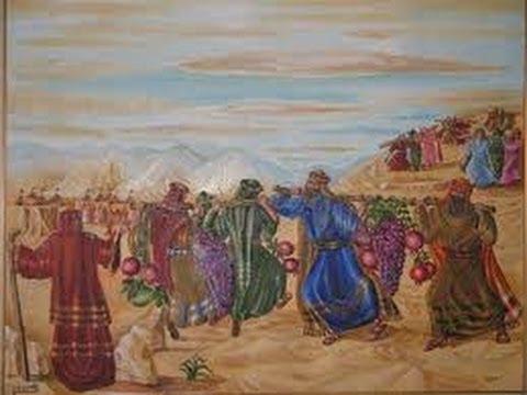 פרשת שלח לך | פגיעה בארץ ישראל היא כפירה בבורא עולם
