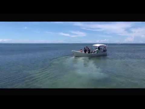 Roatan Divers and Roatan Divers Sandy Bay