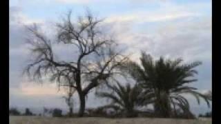 preview picture of video 'Kookherd Photos 02 عکس های کوخرد'