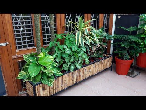 Ground Floor Garden Tour || Ground Floor Garden Overview - pt.2