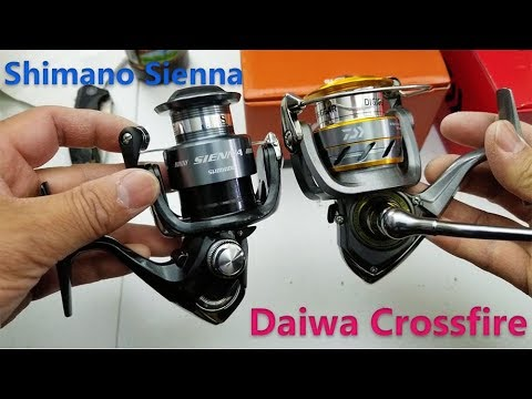 Spinning reel comparison  – Shimano Sienna vs Daiwa Crossfire