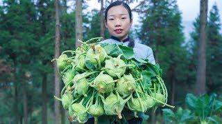 """山里種植了一大片【苤藍】大頭菜,我是這樣做的,你們呢?""""Kohlrabi""""Brassica oleracea Gongylodes Group Chinese Food   野小妹wild girl"""