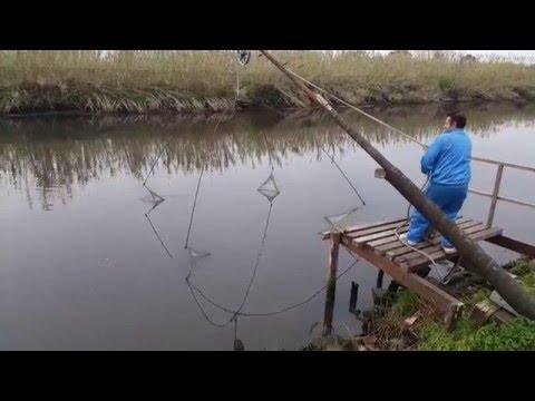 pesca con bilancia ep 3 - Giuseppe saxon