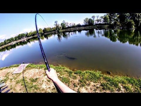 Spazio che pesca in linea