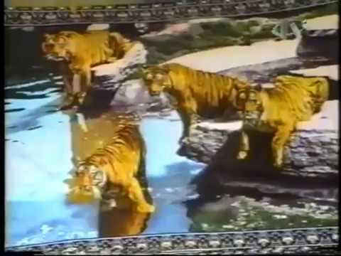 Željko Malnar - Putevima Aleksandra Velikog (1. epizoda)