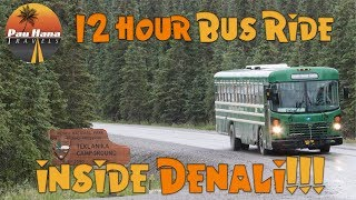 Rving Alaska: Exploring Denali On A Green Bus In Search Of Grizzlies, Caribou And More