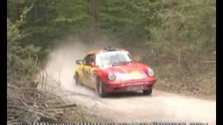 preview picture of video 'Best of Triestingtal Rallye 2009'