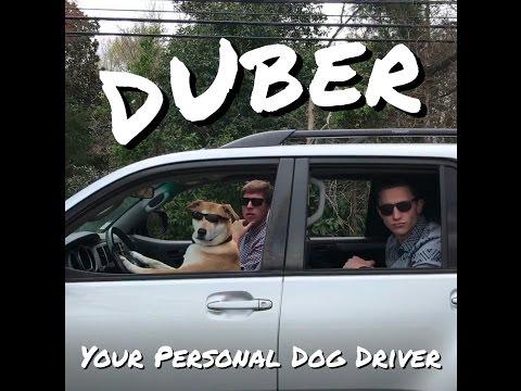 DUber: El perro Uber