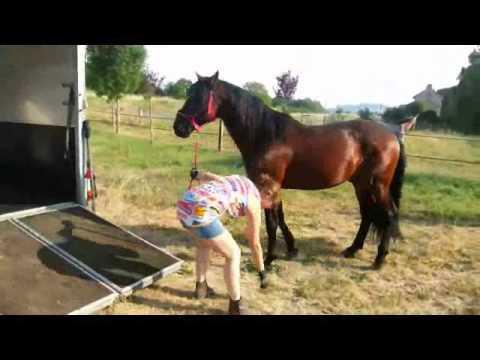 comment apprendre a monter a cheval la r ponse est sur. Black Bedroom Furniture Sets. Home Design Ideas