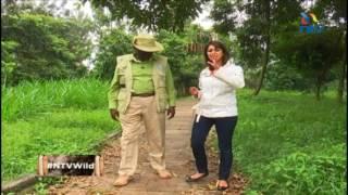 NTV Wild Talk: S2 E5 'Drowning Nairobi'