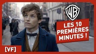 Trailer of Les Animaux Fantastiques (2016)