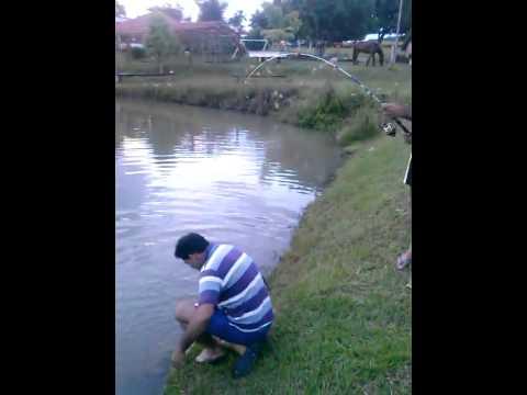 Pescaria em Aurilândia-GO