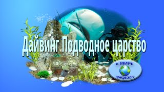 Дайвинг  Подводное царство!