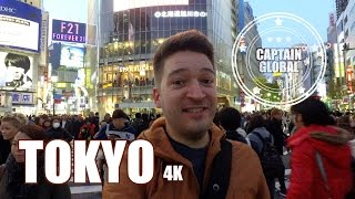 Tokyo Travel Guide: Should you hire a sightseeing guide? (4K)