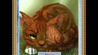 Коты-Воители. Грозовое племя.