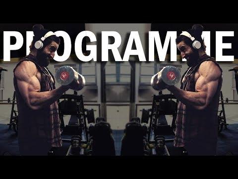 Le rapport des muscles et les os