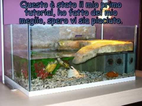 Si puo costruire un acquario fai da te con il vetro delle for Acquario per tartarughe