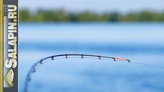 Все о ловле рыб на фидер