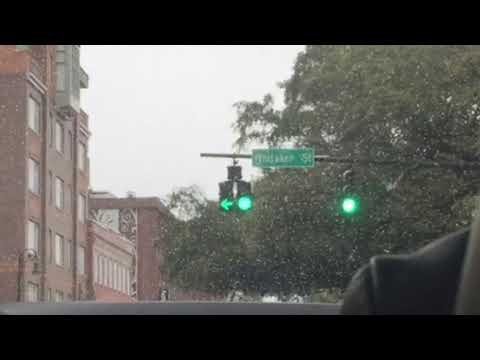 Doghouse Traffic Light From Savannah, GA
