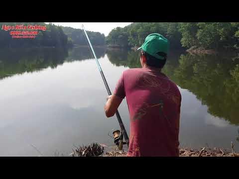 Cận Cảnh Câu Cá Trắm Đen Khủng - Ngọc Biển Fishing