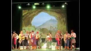 preview picture of video 'CONCURSO CARNAVAL 2013 LA CAROLINA'