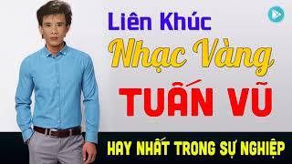 lien-khuc-nhac-vang-tuan-vu-remix-tieng-hat-tuan-vu-phuong-hoang-hay-nhat-moi-thoi-dai