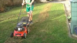 Rasen Vertikutieren und Kalken   Rasenpflege im März 2017