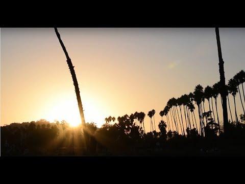Tyler Gilbert - Need Love & Shelter [Official Music Video]