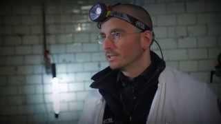 Ortstermin: Mark Benecke über seine Arbeit an Tatorten und Hilfe von Insekten