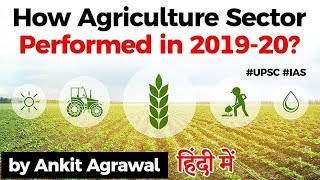 How Agriculture Sector performed in 2019-20? At 5.9% Agriculture is the only bright spot of economy