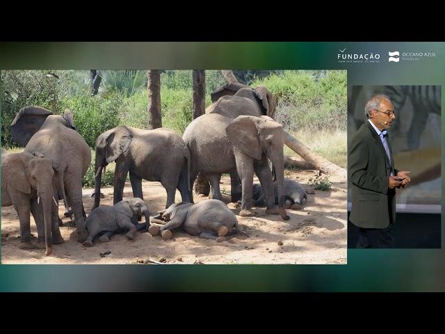 Carl Safina - O habitat natural