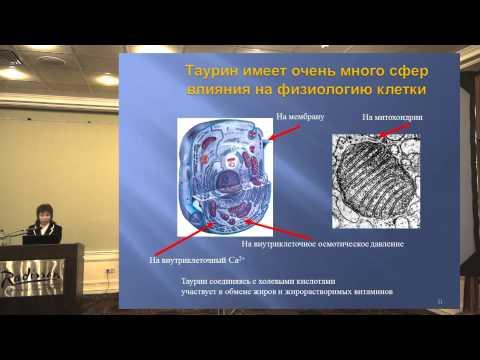 Таурин в терапии ожирения, к.м.н., доцент М. М. Романова