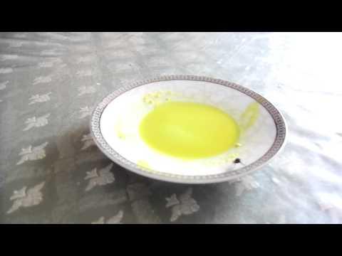 Verme di uova di uovo di helminths