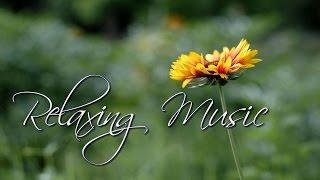 Розслаблююча музика, заспокоїти розум і душу