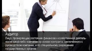 Аудитор. Толковый Видеословарь русского языка