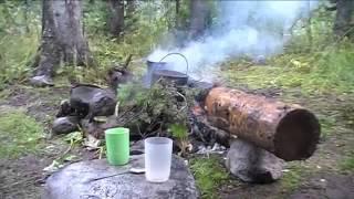 Выживание в Сибирской тайге или Экстремальный туризм 1 часть